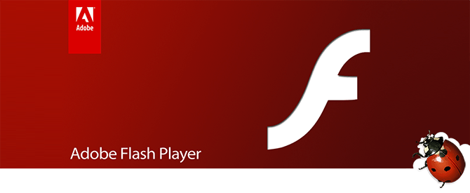 Adobe Flash Player klaida